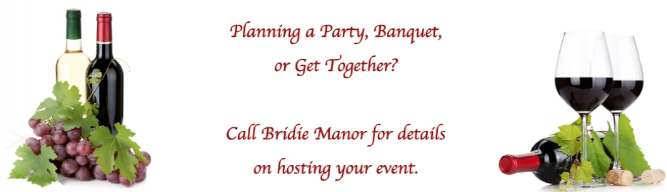 Bridie Events